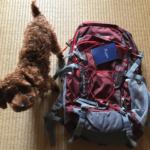 世界一周と海外旅行用にマウンテントップのバックパック 40Lを購入したのでレビューします